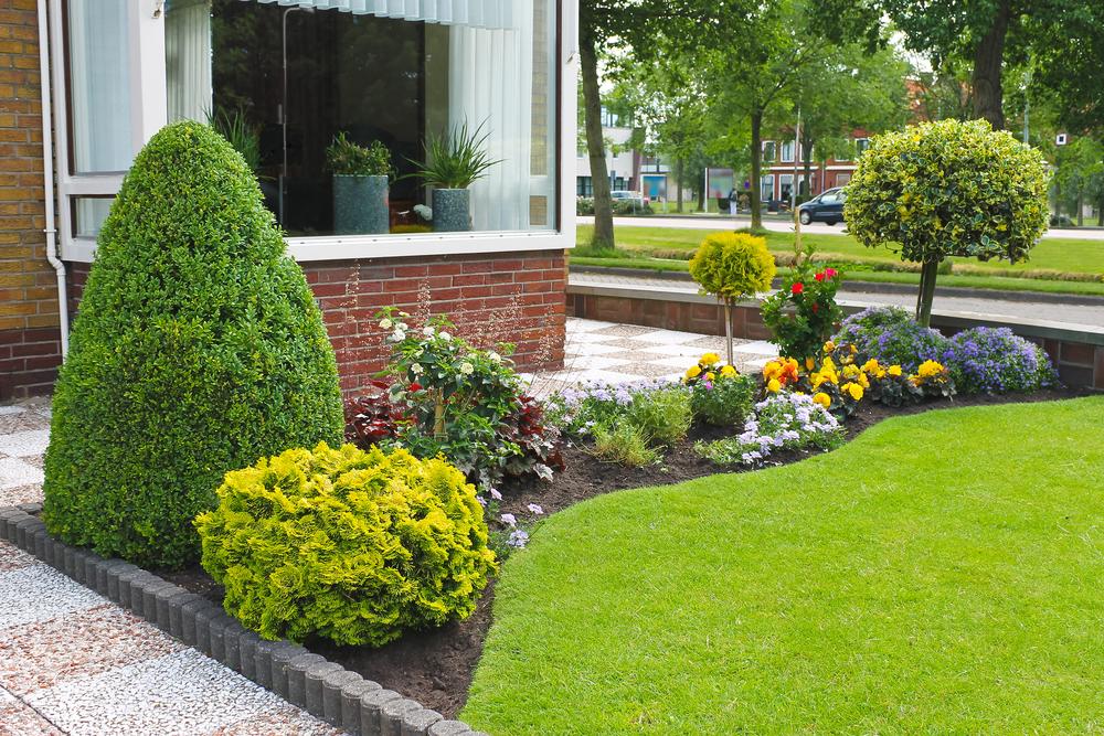 Grasmat aanleggen tuin - Tuindorado