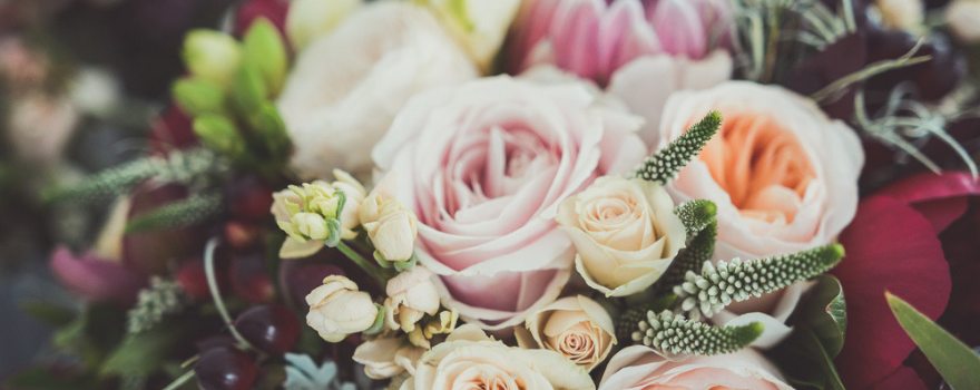 bloemist-drachten-tuindorado