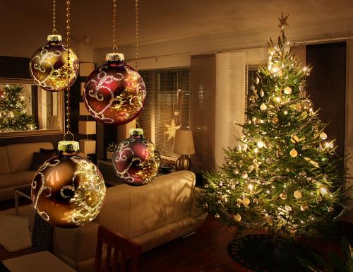 Kerstbomen Tuindorado